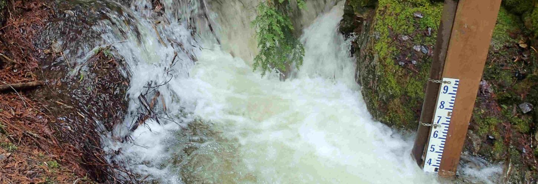 Kootenay Watershed Science