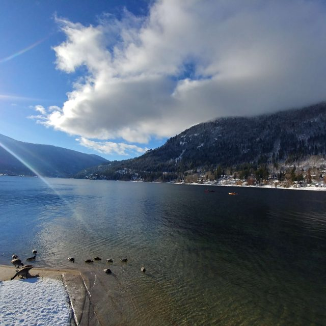Duck Bay (Kootenay Lake) Restoration Project