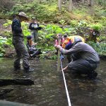 Dipping my toes into aquatic biomonitoring and swiftwater rescue training